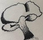A bonsai sketch I did in a tattoo style