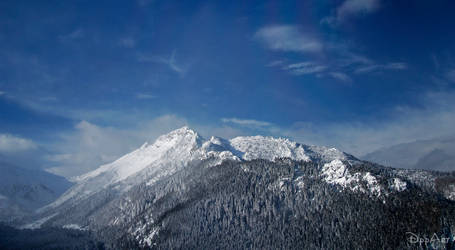 The Tatra Mountains II
