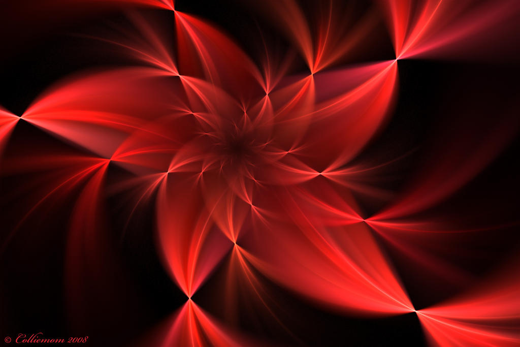 Red Flower Wallpaper By Colliemom