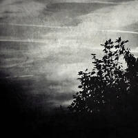 Darkness by sternenfern