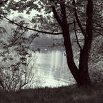 By the Lake-Silence