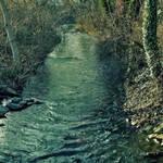 My little River