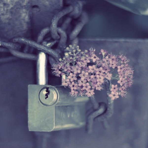 closed by sternenfern