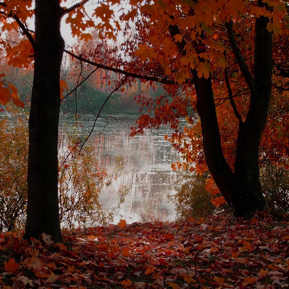 Lake Romance by sternenfern