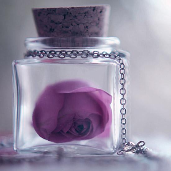 like the little bottle by sternenfern