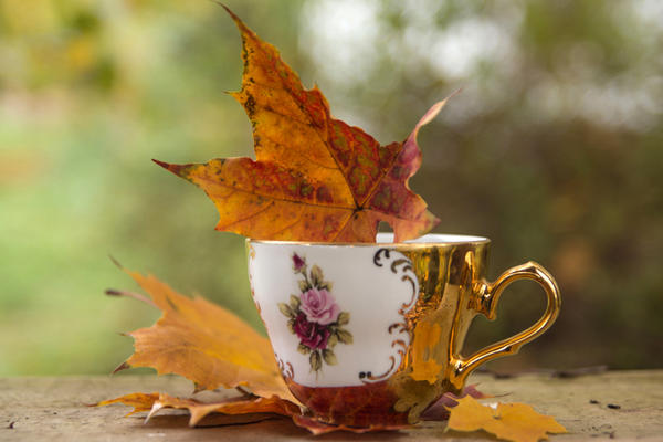 Autumn Feelings by sternenfern
