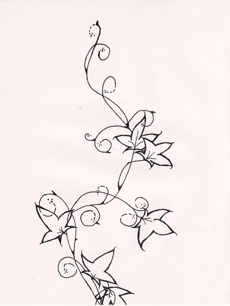 Line Drawing Vines : Vine line drawing imgkid the image kid has it