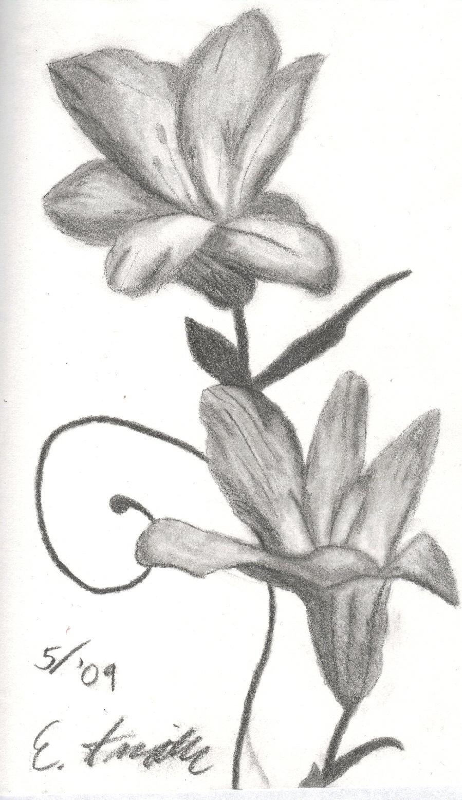 Tiger Lilies by Sadakoe on DeviantArt