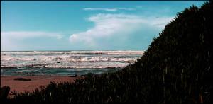 Beach - Angeiras