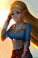 Zelda (BotW) by McDobo