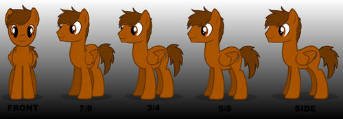 My ponysona / OC (Front positions) by Tail800