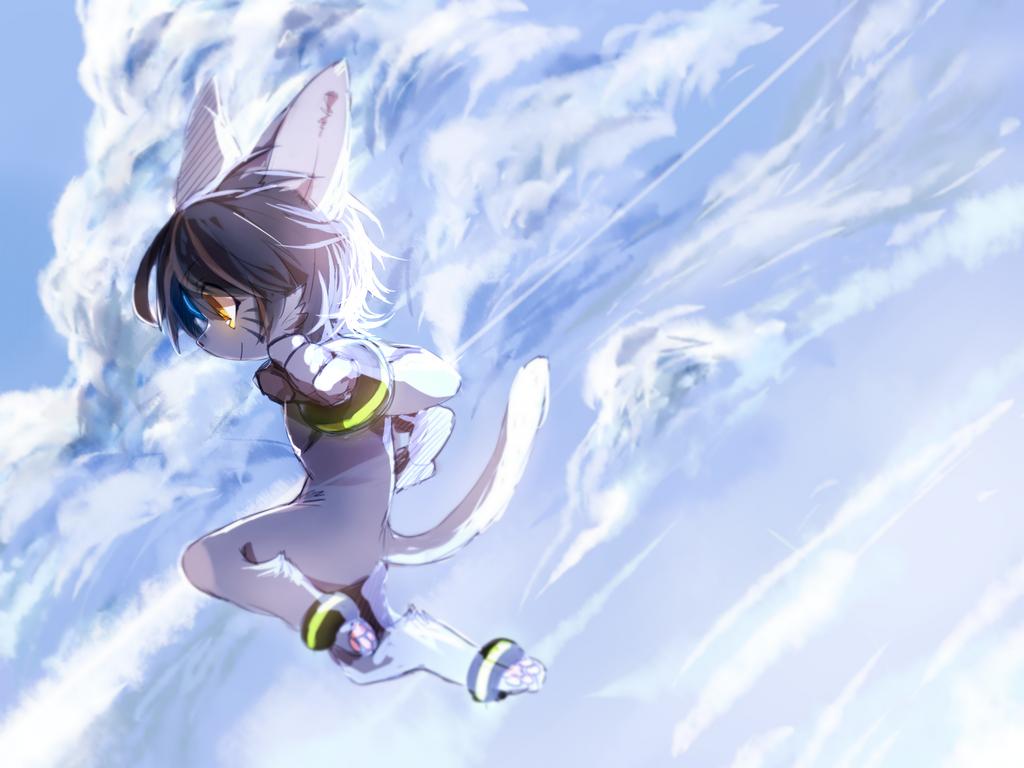 FLY!! by rannpu