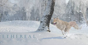 Ethereal - All the cold fluffy things by Ink-H