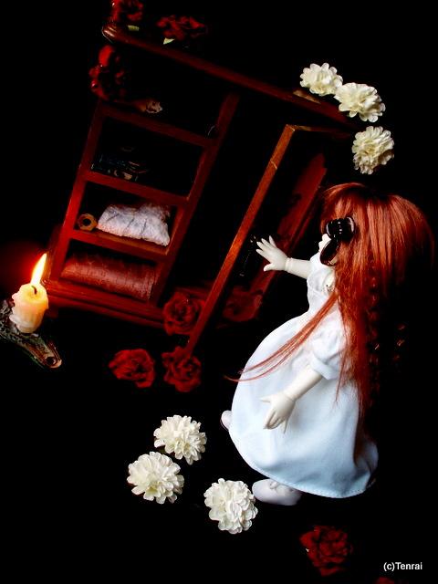[Haunted Wardrobe] (ED Vivien) Roses (p22) D627f9ed0fbbcb8ce0b2c162d6b14cf0-d2pfbsj