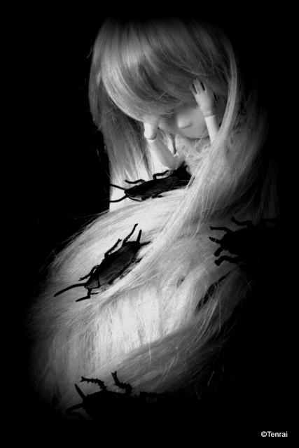 [Les Chrysanthèmes] Shinku - Nfield//Dream (p5) - Page 4 16827986929c60340ced4352190ffcd7-d51ve5c