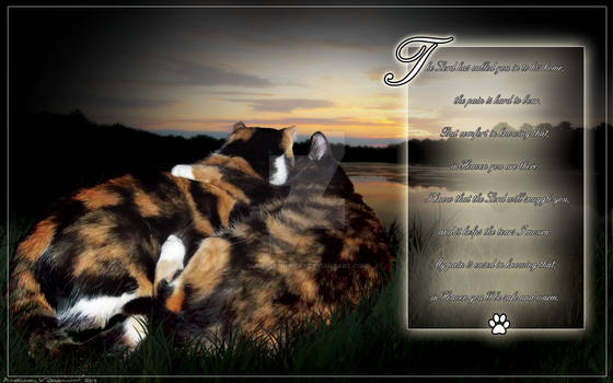 Memorial poem for Patches