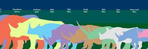 Rhino Comparison Chart