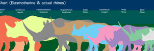 Elasmotherines and today s rhinos