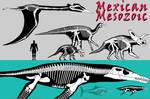 Mexican Mesozoic