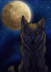 Moon Caller