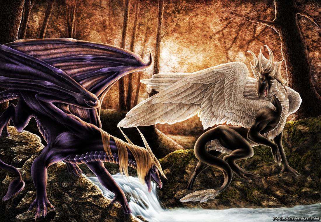 Forest dragons by Marawuff