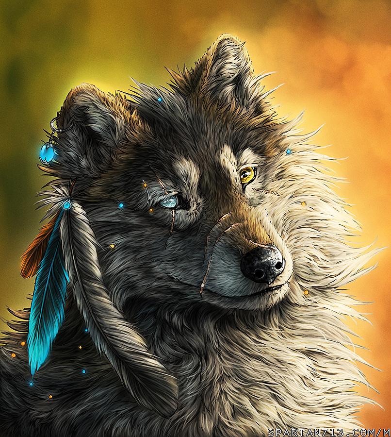 Amazing Wolf: Pin Amazing Wolves On Pinterest