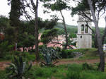 Cres Agave Park