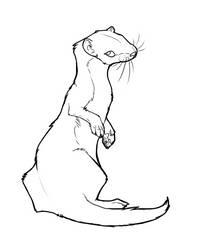 Weasel Lineart