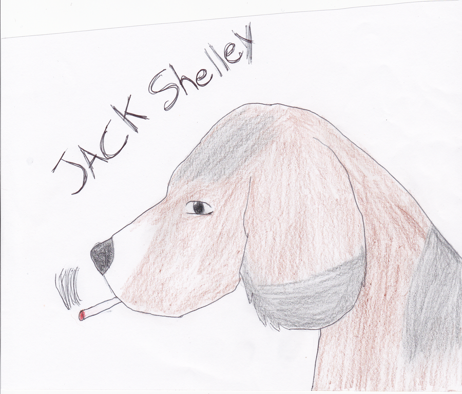 Jack Shelley Aywas beagle by Hollena