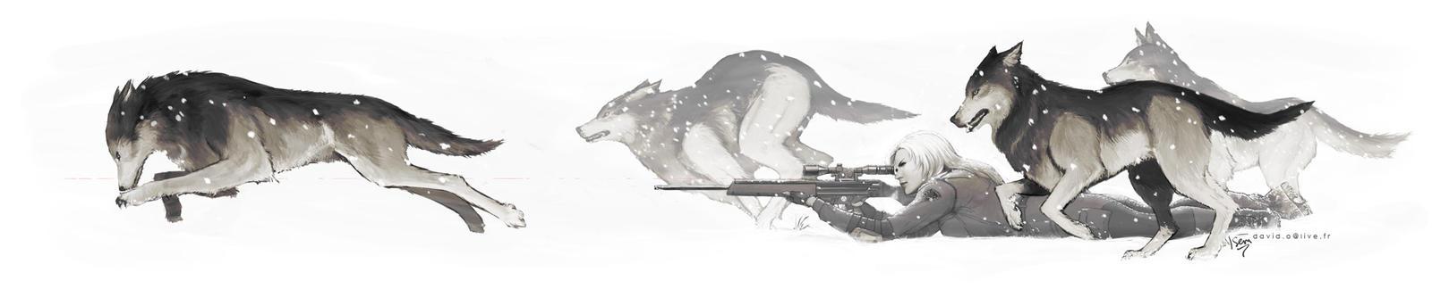 Le loup dans la meute des renards
