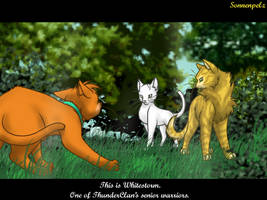 WaCa - Into the wild - Meeting the warriors by Sonnenpelz