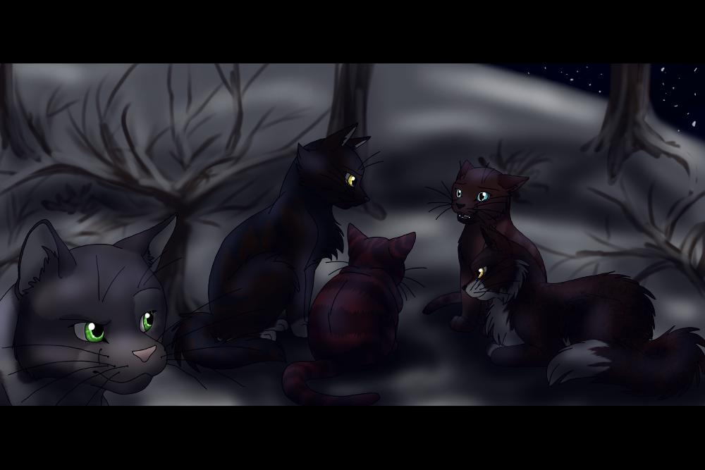 Sternenclan Katen Aus Warrior Cats Gezeichnet
