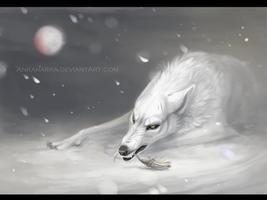 Kiba by Darenrin