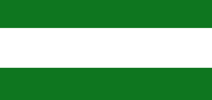 Durrani Empire Flag