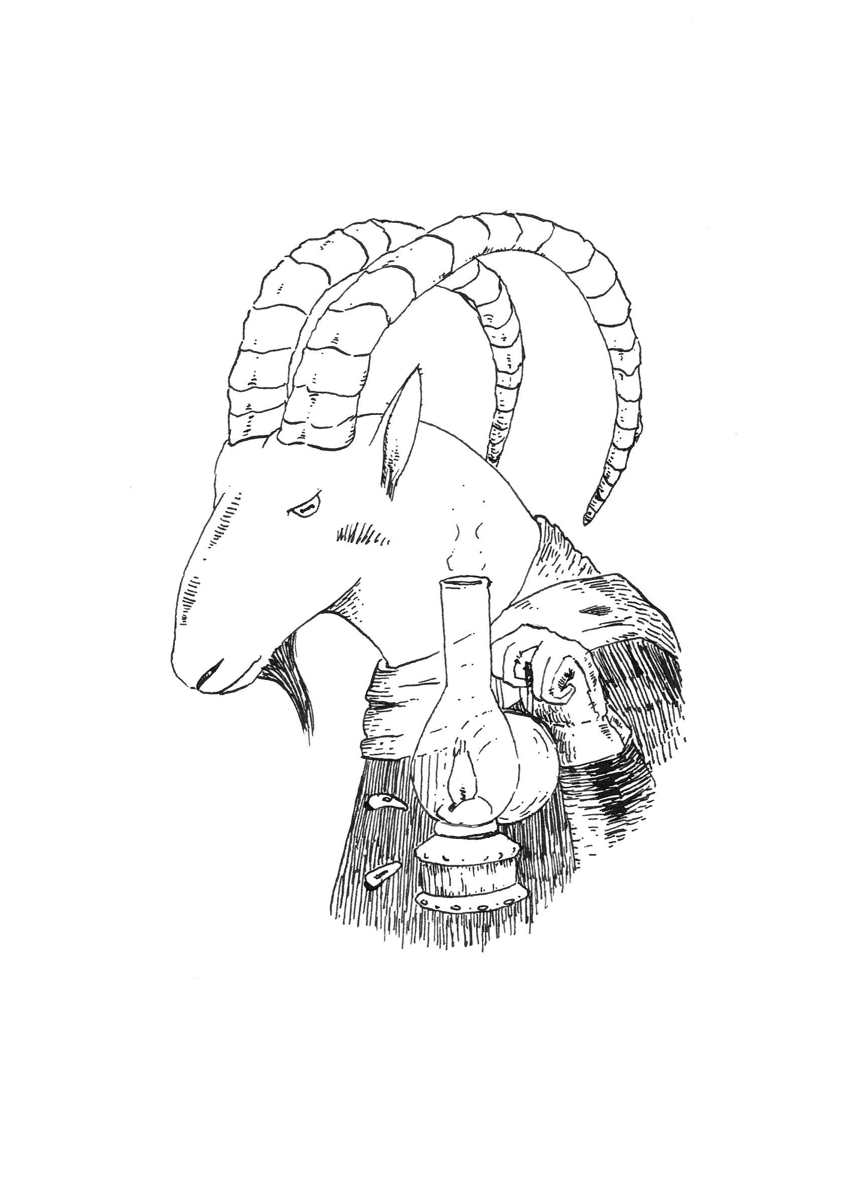 The Cretan Goat by pachryso