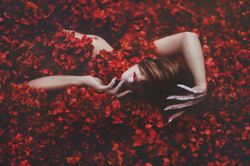 The Flower by samkaczur