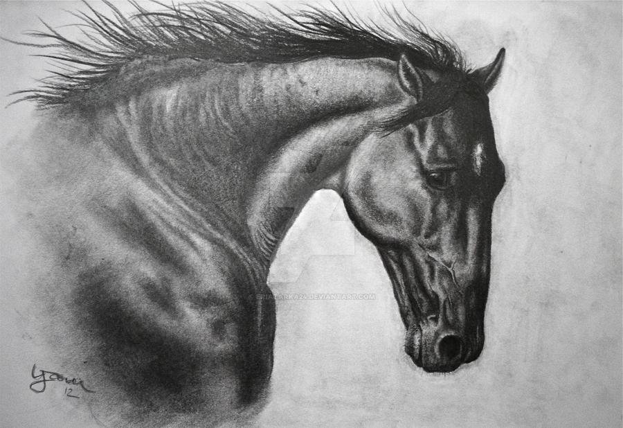 Horse by Eriatarka24