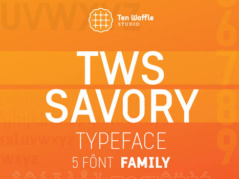 TWS Savory typeface