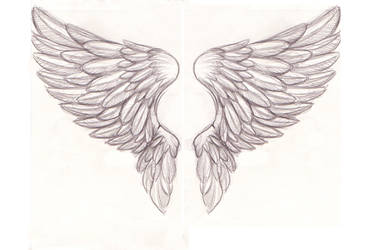 REVAMP:: Wing Tattoo 01 by SyntheticFishTattoo