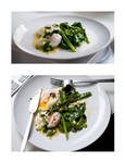 Seared Scallions - Poached Egg