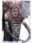Elephant Mojo