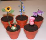 Plant Pot Cakes