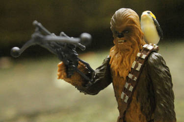 CHEWIE AND PORG