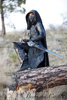 Nightingale Cosplay Shoot Round 3! -2 by Beebichu