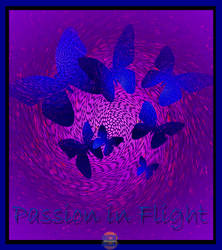 Passion In Flight 2013 by Emuzin2