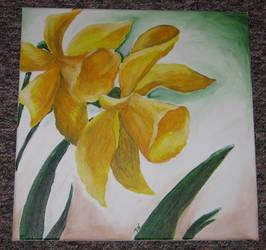Daffodils by Papaja17