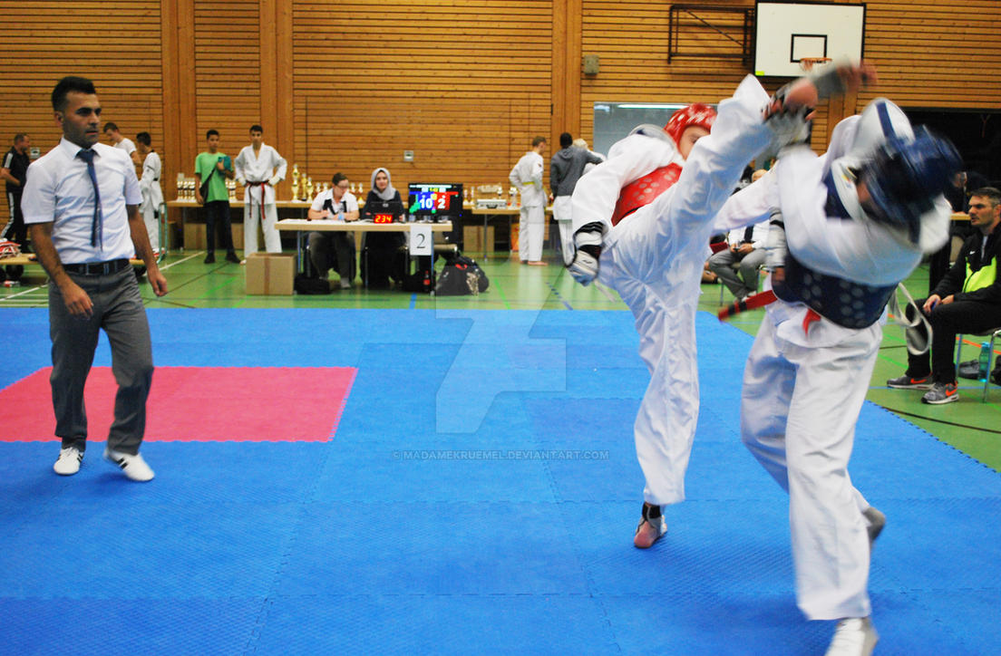 Championships Pluderhausen 37 by MadameKruemel