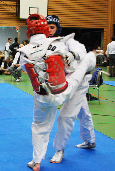Championships Pluderhausen 38 by MadameKruemel