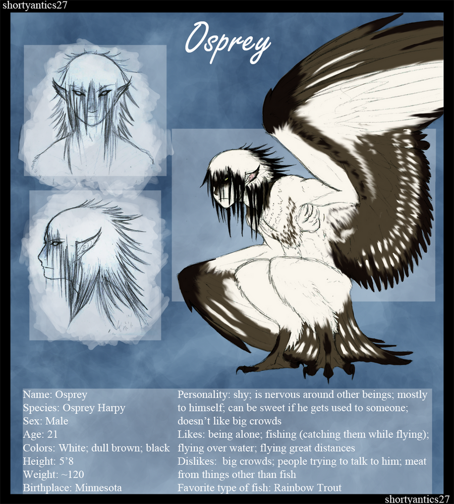 Osprey Reference by shorty-antics-27