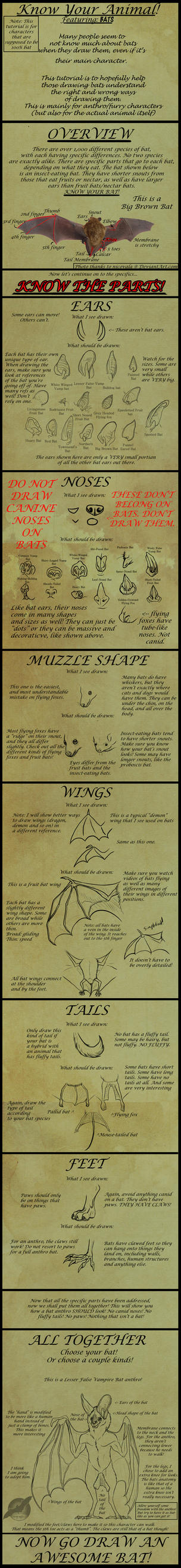 How to Draw Correct Bat Parts on Anthros by shorty-antics-27